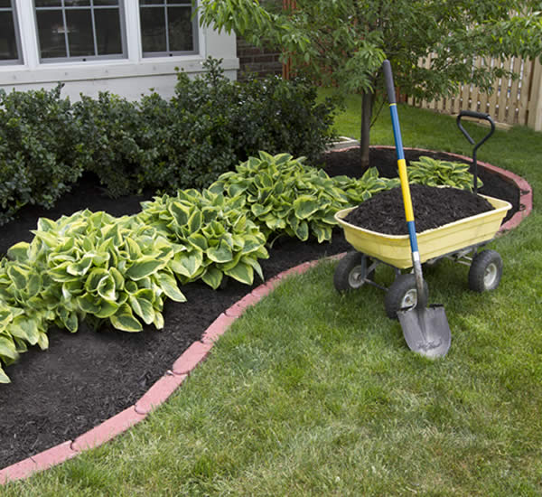 Hellingly garden services official website of hgs for Gardening services